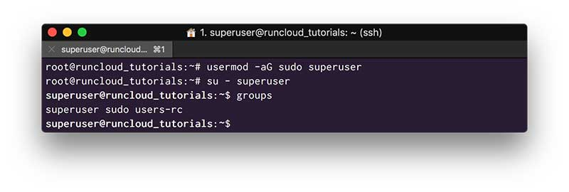 Add your System User to the Sudo Group to enable root privileges.