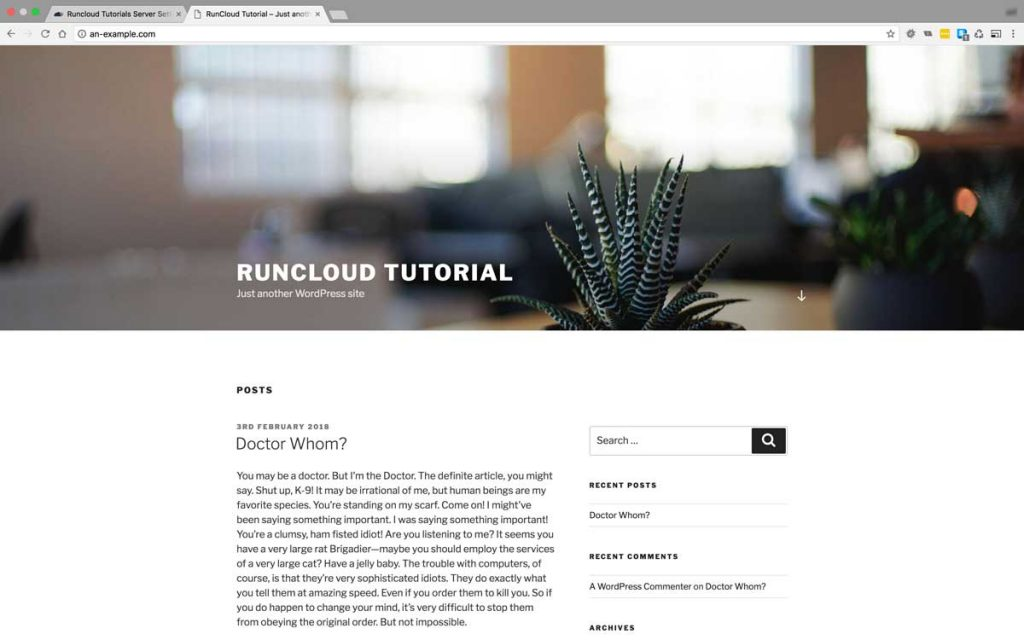 A WordPress site to be cloned in this RunCloud Tutorial