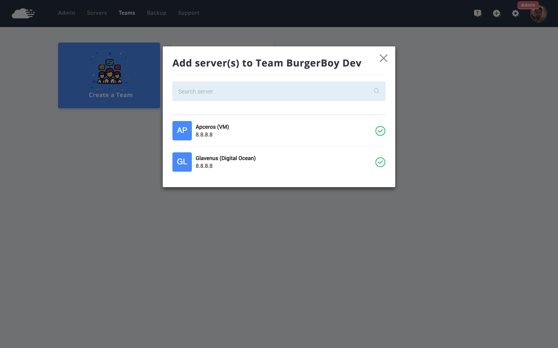 assign team to server