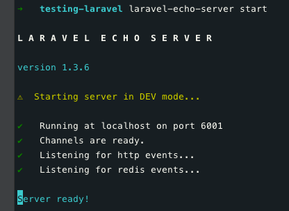 Laravel Echo Server - How to