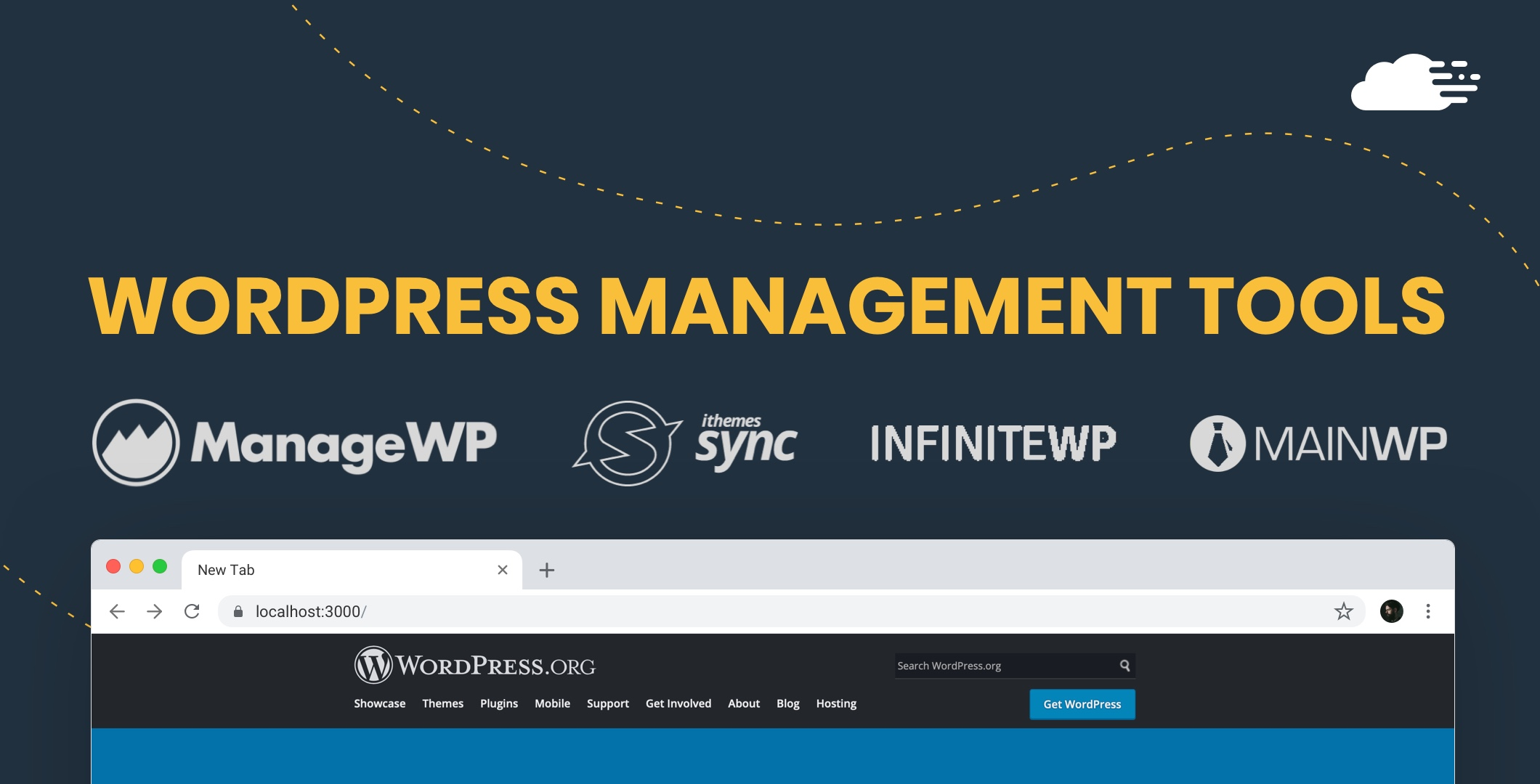 wordpress management tools
