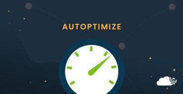 How To Use Autoptimize WordPress Plugin To Optimize Your Sites