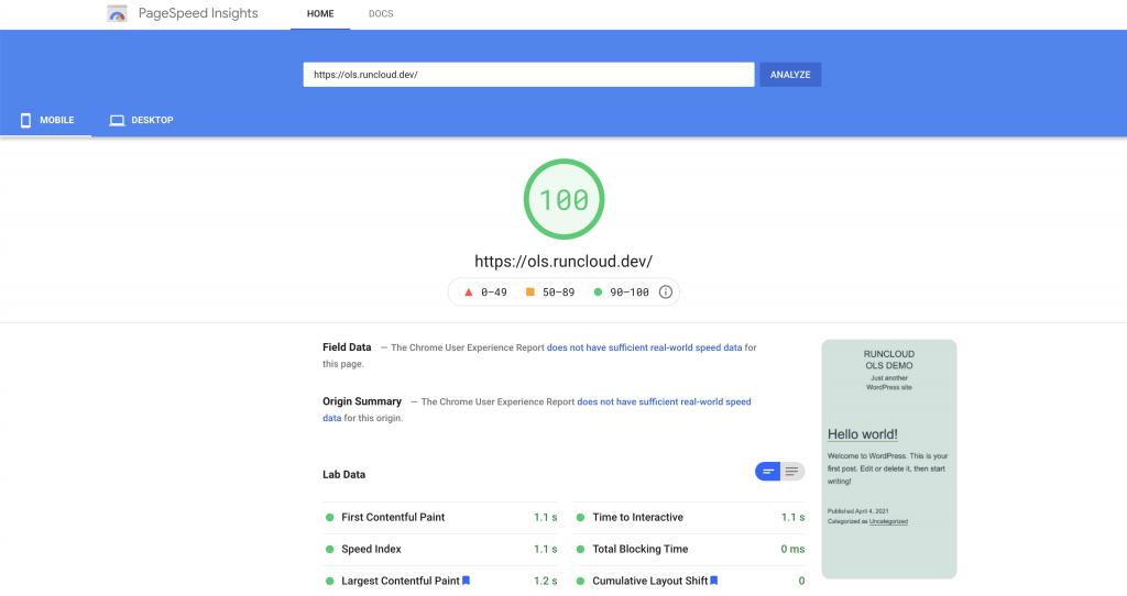 Google PageSpeed Insights OpenLiteSpeed