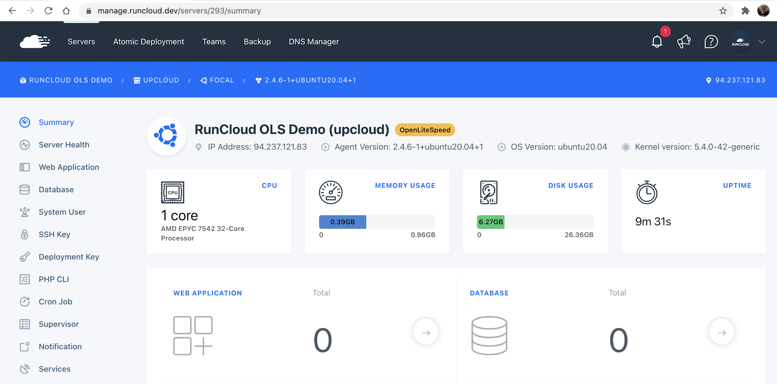 RunCloud Server Dashboard